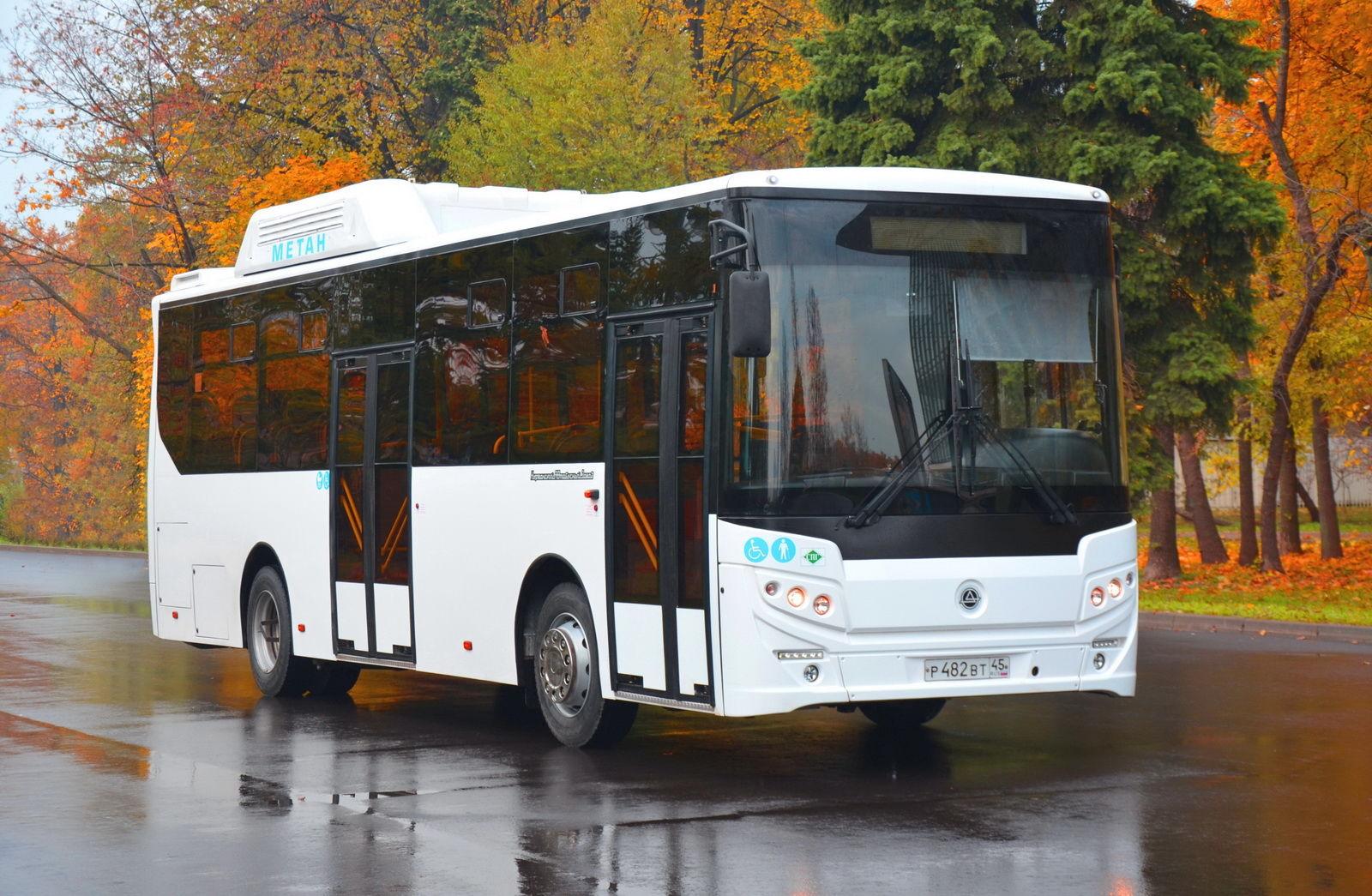 Pulsuz avtobus xətti açıldı - Azərbaycanda YENİLİK